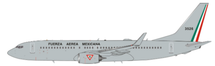 Mexico Air Force Boeing 737-800 3526 With Stand