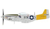 P-51D Mustang USAAF 506th FG, 462nd FS, #44-72587 Hon Mistake, William Ebersole, Iwo Jima, 1945