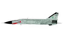 MiG-25PD Foxbat-E Ukranian Air Force 146th GvIAP, Red 49, Vasilkov, Ukraine, 1995