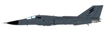 RF-111C Aardvark RAAF No.1 Sqn, A8-143, RAAF Tindal, Australia, 1999