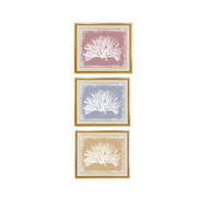 "Trowbridge ""Colored Corals"" Prints - Set of 3"