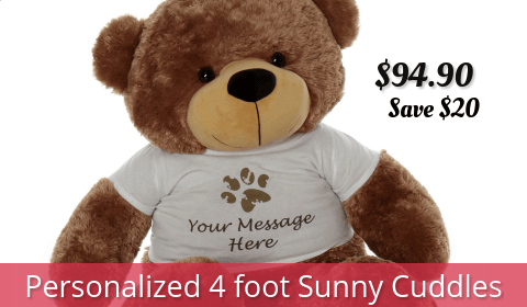 4-foot-personalized-brown-teddy-bear-sunny-cuddles-with-tshirt-480x280-best-sellers.png