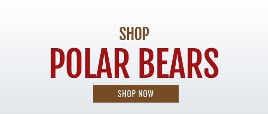 Shop polar bears teddy