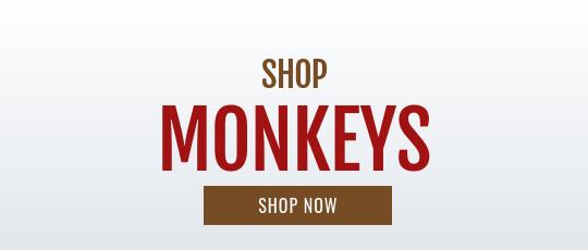Shop Stuffed Monkey