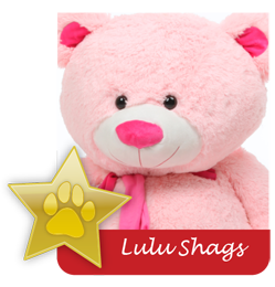 Lulu Shags famous giant teddy bear