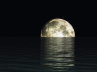Alf Lail - One thousand nights by #AttarMistUK