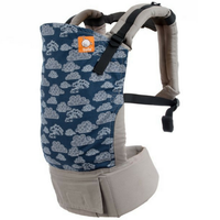 Tula Toddler Carrier - Skyscape