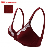 Lunavie - Sheer Comfort Nursing Bra, Maroon (L1016)