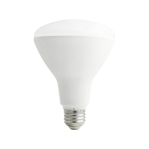 Pure Light 65w Eco friendly Bulb