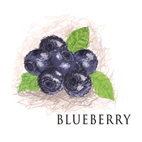 AmericaneLiquidStore® Blueberry Eliquid