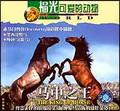 可爱的动物—马中之王