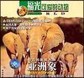 可爱的动物—亚洲象
