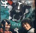 电影—斗牛