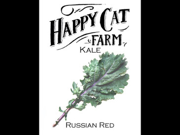 Russian Red Kale