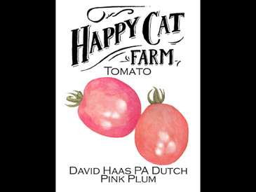 David Haas PA Dutch Pink Plum