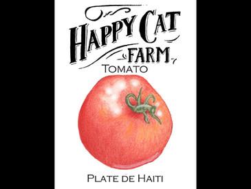 Plate de Haiti