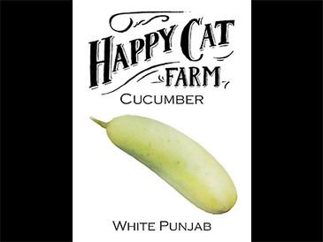 White Punjab