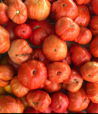 Sicilian Godfather heirloom tomato seeds