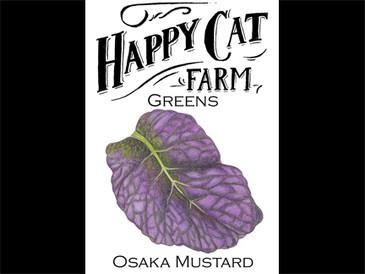 Osaka Mustard Greens