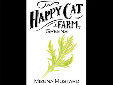 Mizuna Mustard Greens