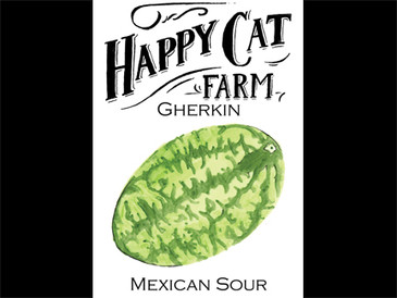 Mexican Sour Gherkins