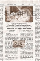 Fake Joke Newspaper Article CROCODILE FOUND IN SEATTLE SEWER