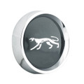Alloy Rim Black Hub Cap-Cougar