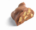 Milk Chocolate Pecan Tootles Holiday Bagged