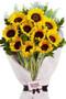 10 Sunflower Bouquet