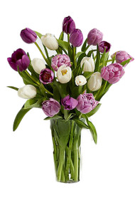 20 Purple and White Tulips Bouquet Vitage Blooms by Lucky Doll®