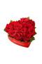 14 pcs Ecuadorian Roses