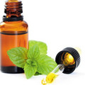 100% Pure Organic Peppermint Essential Oil, France