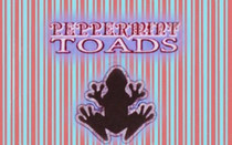 Peppermint Toads Cream Sea Scrub