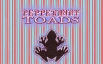 Peppermint Toads Cream Sea Scrub