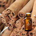 Cinnamon Oil - 1/2 Ounce