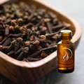 Clove Bud Oil - 1/2 Ounce