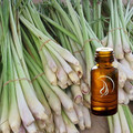 Lemongrass Oil - 1/2 Ounce