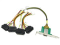 1 Meter Mini SAS Female SFF-8088 to (4) SAS SFF-8482, PCI BRACKET