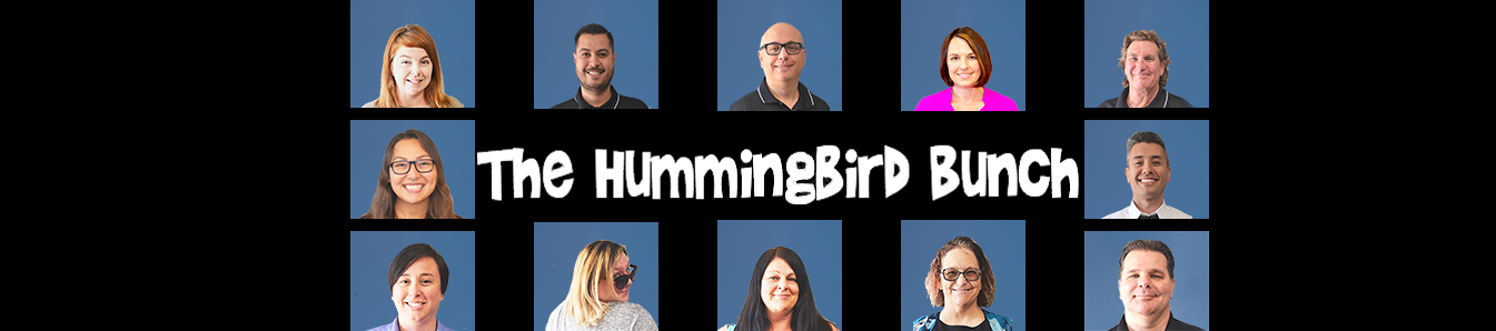 Hummingbird Networks Business It Solutions About Us Team Photo