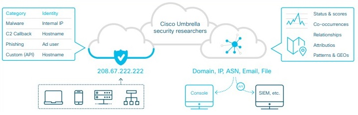 cisco umbrella license