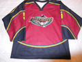 Jacksonville Barracudas 2002-03 Burgandy David Mills One Year Style!!