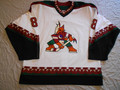 Phoenix Coyotes 2000-01 White Daniel Briere Nice Wear Photomatched!! (SOLD)