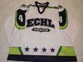 2003 ECHL All-Star Whte Kent Davyduke Nice Style 15 Year Patch!!