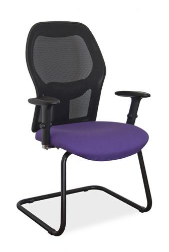 Venus Visitor Chair