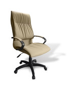 Condor Mid Back Chair