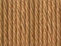 Patons Dreamtime Merino 8 Ply Wool - Honey (3916)