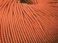 Cleckheaton Australian Superfine Merino 8 ply Wool - Marmalade (81)