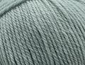 Heirloom Merino Magic 10 ply Wool - Fern (306221)