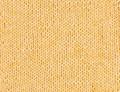 Shepherd Pure Baby 4 Ply Yarn - Marigold (4509)