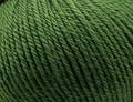 Heirloom Merino Magic 10 ply Wool - Moss Green (6219)